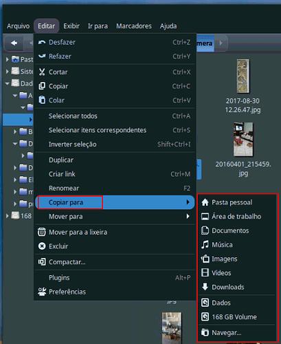 Editar_Copiar_parascreenshot