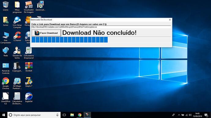 Gerenciador De Download (Versão 1.0)(Minha Autoria)