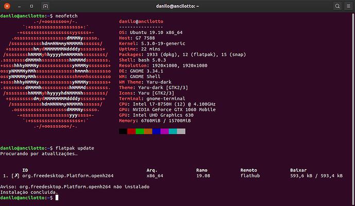 Aviso: org.freedesktop.Platform.openh264 não instalado
