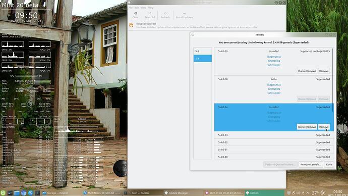 2021-01-06_09-50-27_M-mintUpdate-remove-old-Kernel