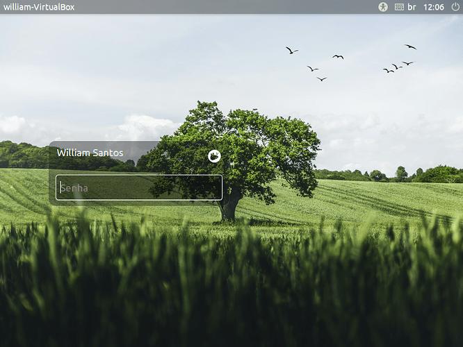 VirtualBox_Mint xfce_16_06_2021_12_06_52