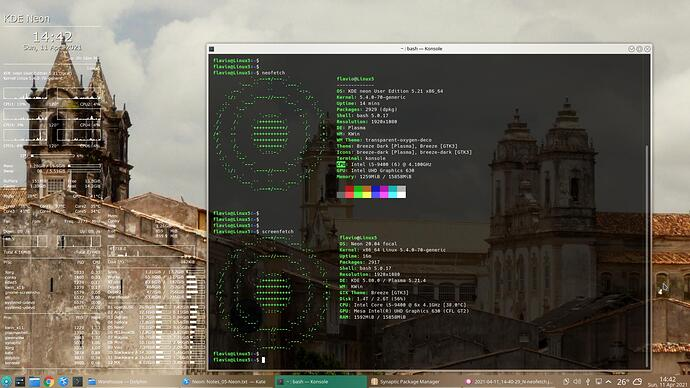 2021-04-11_14-42-45_N-Conky-neofetch-screenfetch