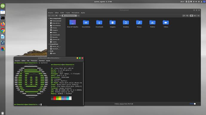 Linux Mint 20.1  com Cinnamon - Terminal Neofetch