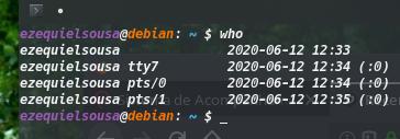Bug-Userdebian